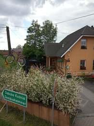 Galeria Memoriał Halupczoka