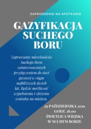 GAZYFIKACJA SUCHEGO BORU.png